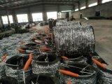 Der Rabatt-heiße Verkauf, der galvanisiert wurden und Kurbelgehäuse-Belüftung beschichteten den Stacheldraht, der in China gebildet wurde