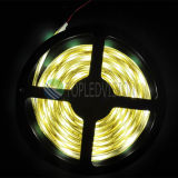 20-22lm/LEDs High Bright SMD5050 Flexible LED Strip Light 30LEDs/M 12V/24V gelijkstroom