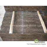 Paso de progresión de mármol/pisada/escalera/canalización vertical de Brown del café