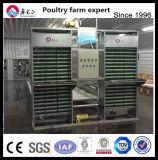 3/4/5/6/di tipo automatico gabbie delle file H di batteria del pollame per gli strati