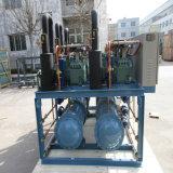 Unité de réfrigération source froide pour Machine Quick-Freezing