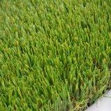 نوعية جيّدة عشب اصطناعيّة لأنّ منظر طبيعيّ ([غس])