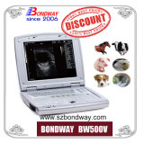 Ultraschallsignalumformer-Preis, verwendeter Aloka Ultraschall, Veterinärfarben-Doppler-Ultraschall, Tierarzt-Ultraschall für Pferd, Kuh, Vieh, Schwein, Veterinärultraschall