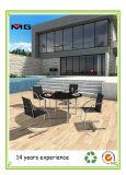 Sillas de jardín al aire libre con marcos de acero inoxidable