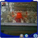 Сборные оцинкованный куриное мясо птицы стали структуры питателя
