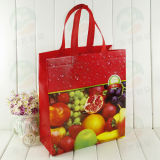 Le sac à provisions non tissé d'approvisionnement d'endroit avec 3D a personnalisé l'impression (MY-001)