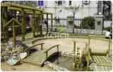 Комплекты спортивной площадки детей Kaiqi деревянные напольные для селитебного парка, заднего двора, гостиницы Gardenl (KQ60094A-I)