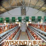Camera di pollo prefabbricata della Camera dell'uccello della struttura d'acciaio