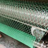 Piccola rete metallica galvanizzata vendita calda del pollo del foro