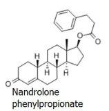 Migliore Nandrolone superiore Phenylpropionate CAS 62-90-8 di prezzi per il supplemento del Bodybuilder