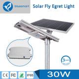 batteria di litio 30W tutta agli indicatori luminosi solari dell'un di illuminazione di via giardino della lampada