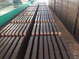 Tunnel-Brennofen für den Lehm-Ziegelstein, der Pflanze bildet