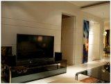 Самомоднейшие панели заволакиваний стены PVC украшения искусствоа стены для гостиницы