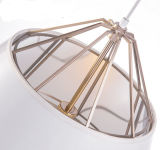 Jianer Nice Hotel Gaststätte Suspenion Hanging Lamp Lighting, mit 2 Sizes