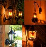 ampoules créatrices d'effet d'incendie de lampe de flamme de 5W7w DEL avec les lampes décoratives de clignotement d'usager