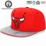 Casquillo colorido del Snapback del sombrero del campista de Hiphot 2016 de la alta calidad para los muchachos y las muchachas