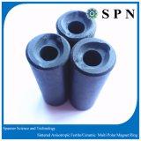 /Ferrite di ceramica a magnete permanente per la pompa ad acqua