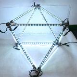 나무를 위한 풀그릴 DMX 3D 별똥별 LED 유성 빛