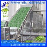 Большие Окра обезвоживающих осушитель Производство сушеных овощей обрабатывающего станка