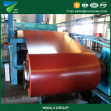 PPGI a laminé à froid l'usine en acier de bobines de Prepianted Glvanized