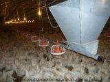 家禽の送り装置および酒飲みのアクセサリの製造業者