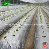 Сельское хозяйство пленки для мульчирования растянуть пленку сельского хозяйства фильм выбросов парниковых газов