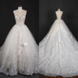 Вышивание V обратно Applique валики мяч устраивающих Gowns свадебные платья Qh66006