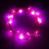 Feuilles de cordes décoratives à LED