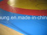 Geheel dat Viny Matten van de Gymnastiek van de Dekking &Grappling worstelt