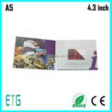 4.3 Inch-videobroschüre /Video, das Card/LCD blaues Book-2014 heiß grüßt