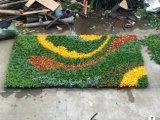 Piante di alta qualità e fiori artificiali del giardino verticale Gu-Mx2091403