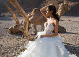 Robe chaude de Birdal de robe de mariage de Ballgown de vente (BH011)