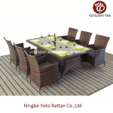 Wicker esterno Dining Set con Steel Frame (1212)
