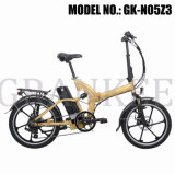 Elektrisches Bicycle mit En15194 Wheel Motor