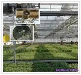 Выбросов парниковых газов в саду на крыше круглой формы висящих циркуляционного вентилятора