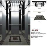 競争価格の乗客のエレベーター