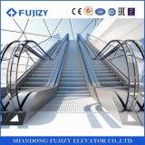 Scala mobile dell'interno di En115 Fujizy con il prezzo basso