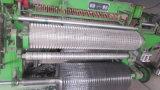Galvanisierter und verstärkter geschweißter Maschendraht (Fabrik u. Exporteur)