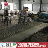 Jaula de plata de la capa de la marca de fábrica de la estrella de China para las capas