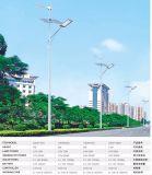 Hightの品質の風の太陽街灯Systrmの太陽ハイブリッドパワー系統