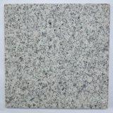 Preiswertester hellgrauer Granit-Fliese-Pflasterung-Polierstein des Granit-G603
