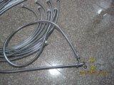 3m Steeel douche en acier inoxydable flexible, Pedm, l'écrou en laiton, finition chromée, certificat de l'ACS