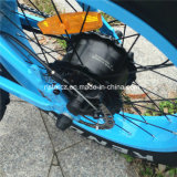 20inch pliant le gros vélo Rseb-509 du pneu 500W E