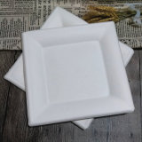 El bagazo vajillas compostable cuadrado blanco placas biodegradables