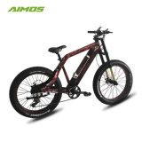AMS-Tde-Sr 48V 1000W nieve grasa eléctrico moto Scooter eléctrico de neumáticos