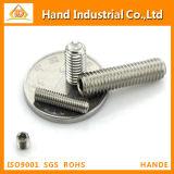Hex Einstellschraube der SS-304 Kontaktbuchse-DIN916 mit Cup-Punkt
