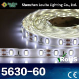 Professional 60 LEDs/Metro IP65 5630 Tiras de LED