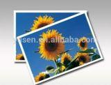 papier d'imprimerie photographique à haute brillance de jet d'encre de 200g A3