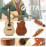 최신 판매 도매 음향 기타