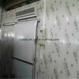 Conservación en cámara frigorífica con el panel de emparedado de la PU para el alimento congelado